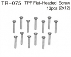 Flat Head Screw Set (M2 x 12mm)